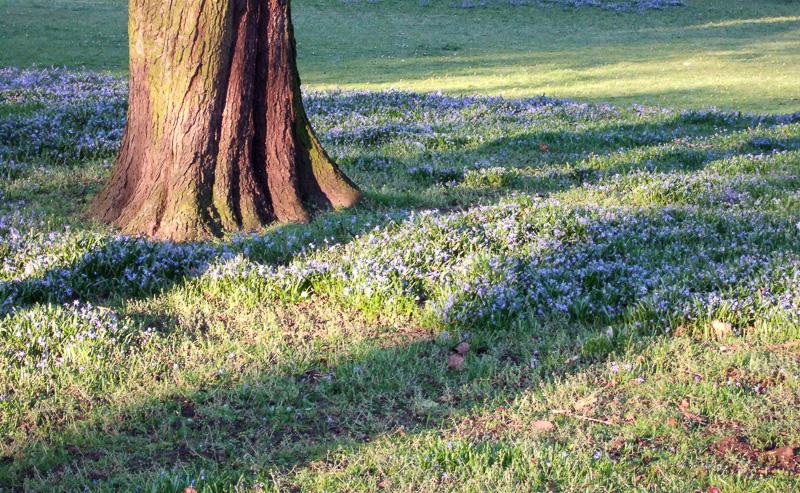 Frühling an der Promenade