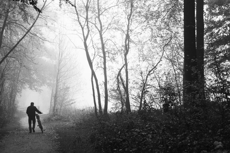 Radfahrer im Nebel im Wald