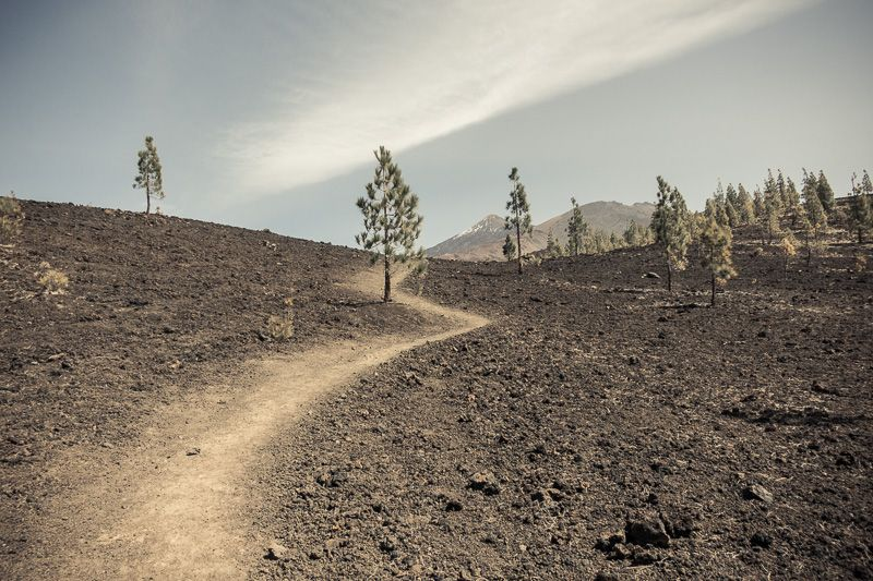 Wanderweg, Samara mit Teide