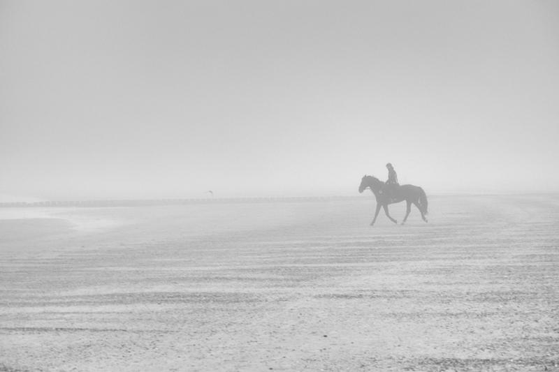Pferd, Strand, Nebel, Reiter
