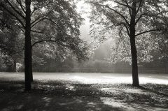 Der Herbst kommt …Münster, Promenade