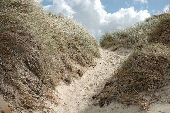 Inselwege, Weg durch die Dünen, Sand