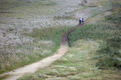 Morsum, Kliff