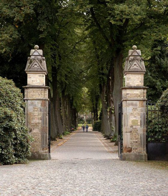 Herbstspaziergang, Zentralfriedhof Münster