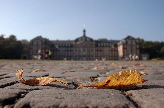 Herbstlaub vor dem Schloss in Münster