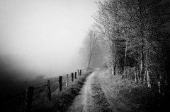 Mystisch, Nebel im Lipperland