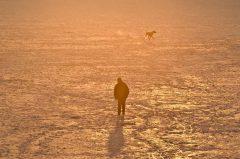 Eiskalt…… Mann mit Hund
