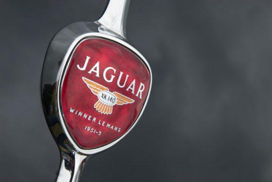 alter Jaguar