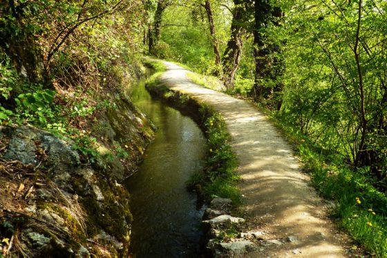 Waalweg bei Schenna, Südtirol