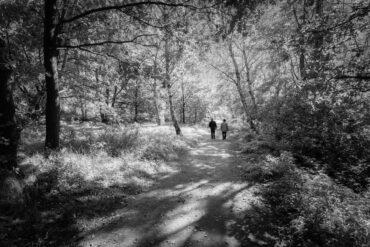 Spaziergang am Hiltruper See, Schwarzweiß