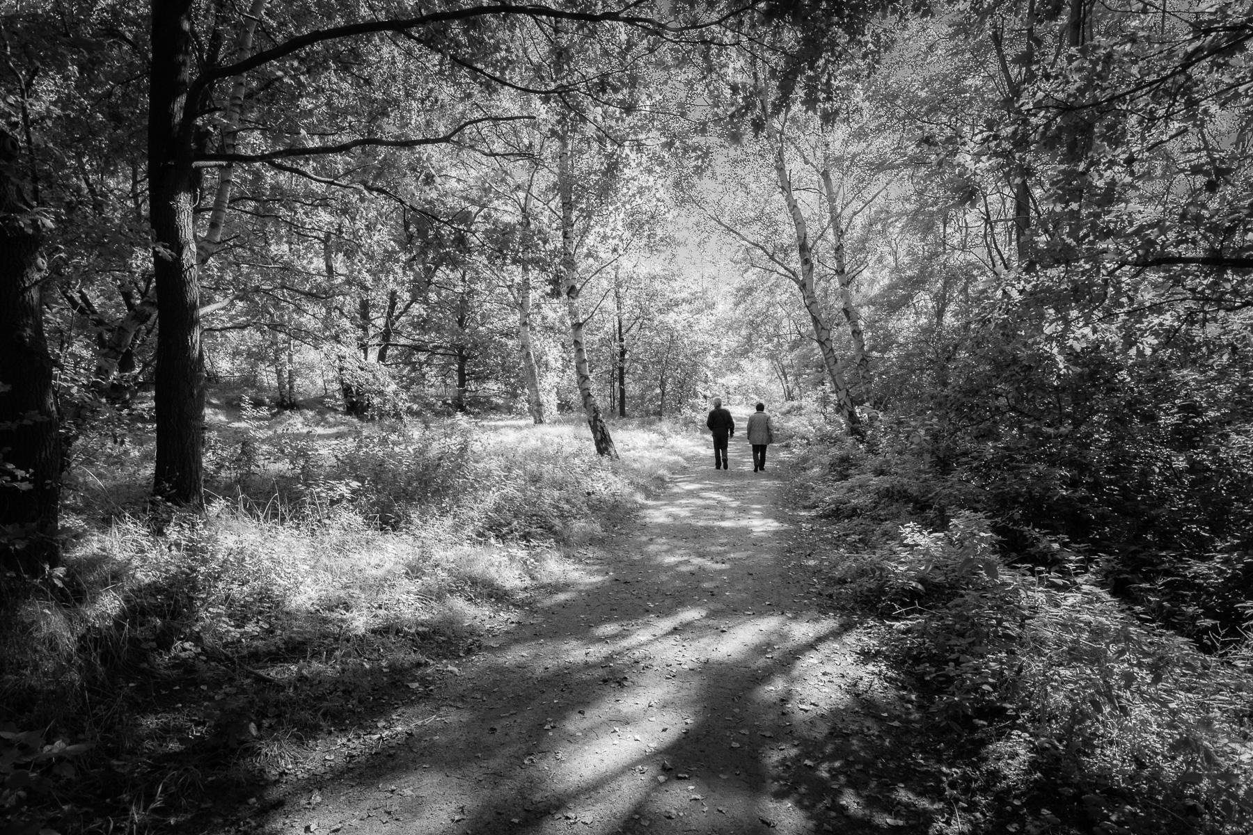 Paar im Wald, Schwarzweiß