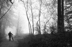 Ein Radfahrer schiebt sein Rad durch einen nebeligen Herbstwald