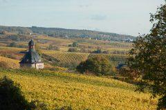 Urlaub im Rheingau, bei Rüdesheim im Herbst